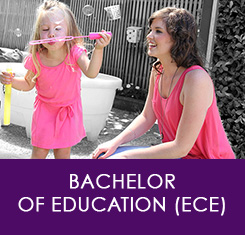 Career Guide Bachelor of Education
