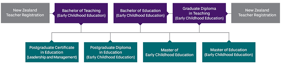 leadership management and administration in early childhood education essay Leadership management and administration in early childhood education leadership management and administration in essay about leadership in early childhood.